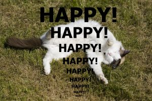 HappyMozart