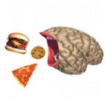 Vad äter din hjärna?