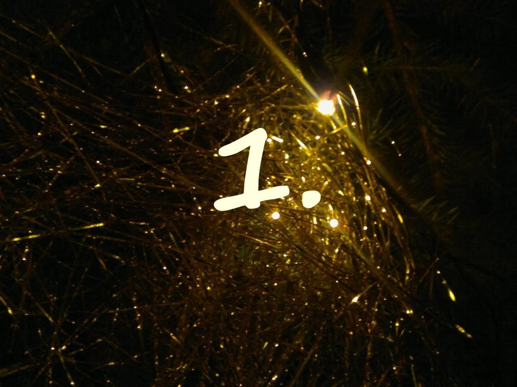 rp_20111224054-1024x768.jpg