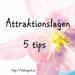 Attraktionslagen: 5 tips